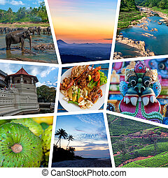 Sri Lanka travel collage
