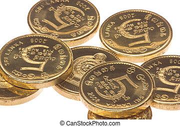 Sri Lankan Coins Macro Isolated