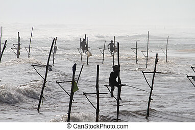 Sri lankan fisherman - Some fisherman are fishing on a stick...