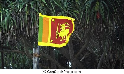 Sri Lankan National Flag Flapping in the Wind in Hikkaduwa -...