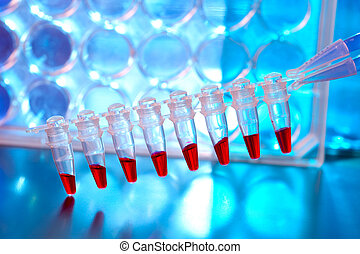 Sripe of plastic tubes with samples for DNA analysis. / Blood samples for research in microtubes