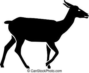srna, jelen, silueta