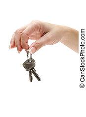 stämm, lägenhet, holdingen, bukett