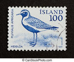 stämpel, island, -, tryck, 1981: