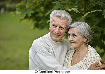 stående, av, elderly kopplar ihop, tillsammans, i park