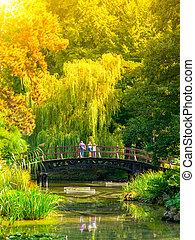 stående, grönska, trädgård, folk, trä, parkera, över, yppig, bro, liten, damm, botanisk