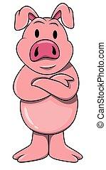 stående, gris