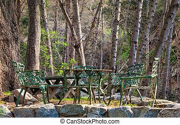 stühle, flächen, chantry, wald, tisch