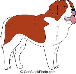 St Bernard dog hand drawing vector