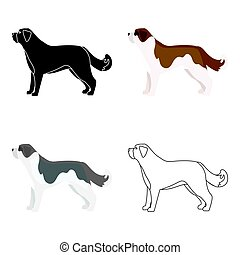 St. Bernard dog vector icon in cartoon style for web - St....