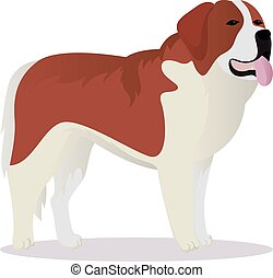 St Bernard dog vector illustration