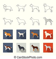 St. Bernard, retriever,doberman, labrador. Dog breeds set...
