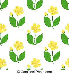 St. John's wort seamless pattern, hypericum. Cartoon style. Vector illustration