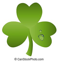 St. Patrick card with green leaf of clover and transparent drops of water on it