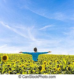 staand, akker, vrouw, zonnebloemen
