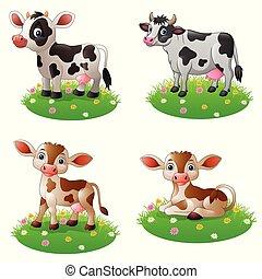 staand, set, koe, verzamelingen, gras, spotprent