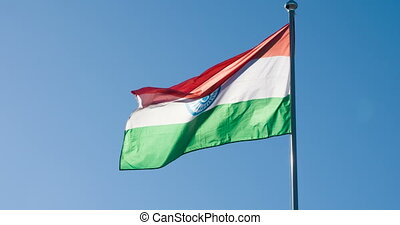 staat, india vlag