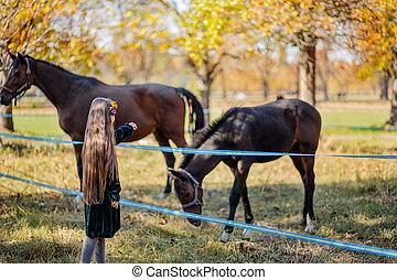 stable., 幸せ, 馬, 地位, 女の子, なでること, フェンス