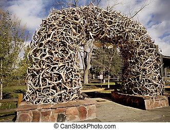 Stack Elk Antlers - Stack of Antlers from the Elk Wildlife...
