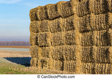Stack of bales of straw
