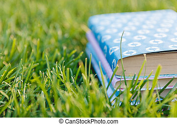 Stack of Books on the Grass