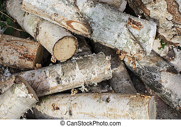stack of chopped birch-tree