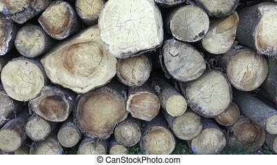 Stack of chopped firewood.  Freshly chopped tree logs stacked up on top of each other in a pile. Timber industry.