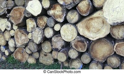 Stack of chopped firewood. Freshly chopped tree logs stacked...
