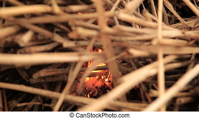 Stack of dry grass on fire outdoors