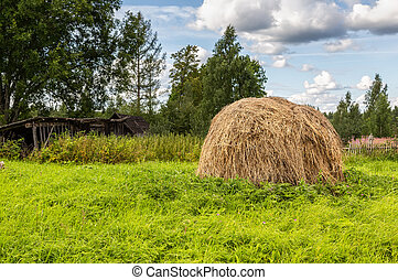 Foreground haystack at the countryside in summer
