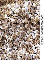Stack  of Garlic at the market
