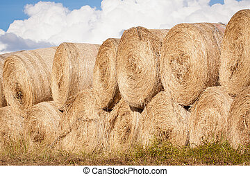 Stack of hay bales drying outdoors