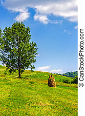 Stack of hay on hillside near the tree