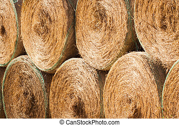 Stack of round hay bales drying outdoors - Stack of round...
