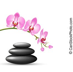 Stack of spa stones with orchid pink flowers isolated on white
