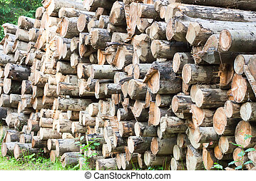 stack of the firewood