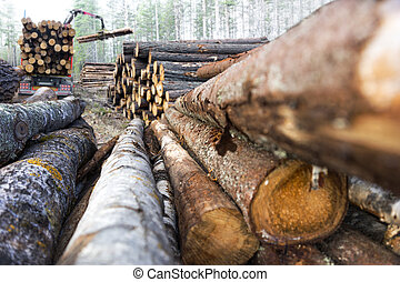 stack of timber - stack of tree trunks, with truck loading...