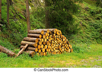 stack of wood 24