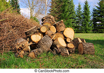 stack of wood 29