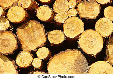 stack of wood 33