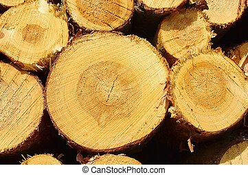 stack of wood 36