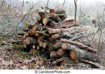 Stack of wood for the fireplace