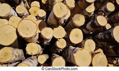 Stack of wood logs - Slider shot of stack of wood logs