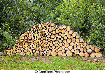 wood stacked for drying in the woodpile - Stack of Wood wood...