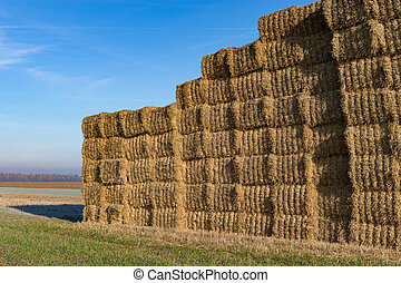 Stacked bales of straw