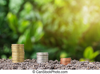 stacked coin on soil for nuture background
