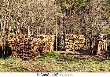 Stacked firewood in the garden. Preparing for the winter. Work in forest. Spring evening in the garden.
