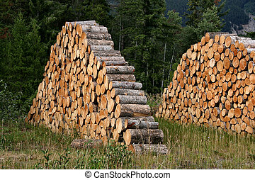 Stacked firewood - logs ready to be thrown into a fireplace.