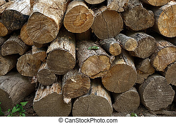 Stacked Logs - A stack of cut logs for firewood...
