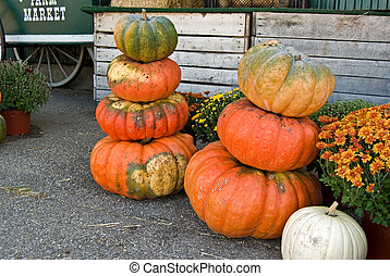Stacked Pumpkins - Pumpkins stacked with mums at the farmer'...